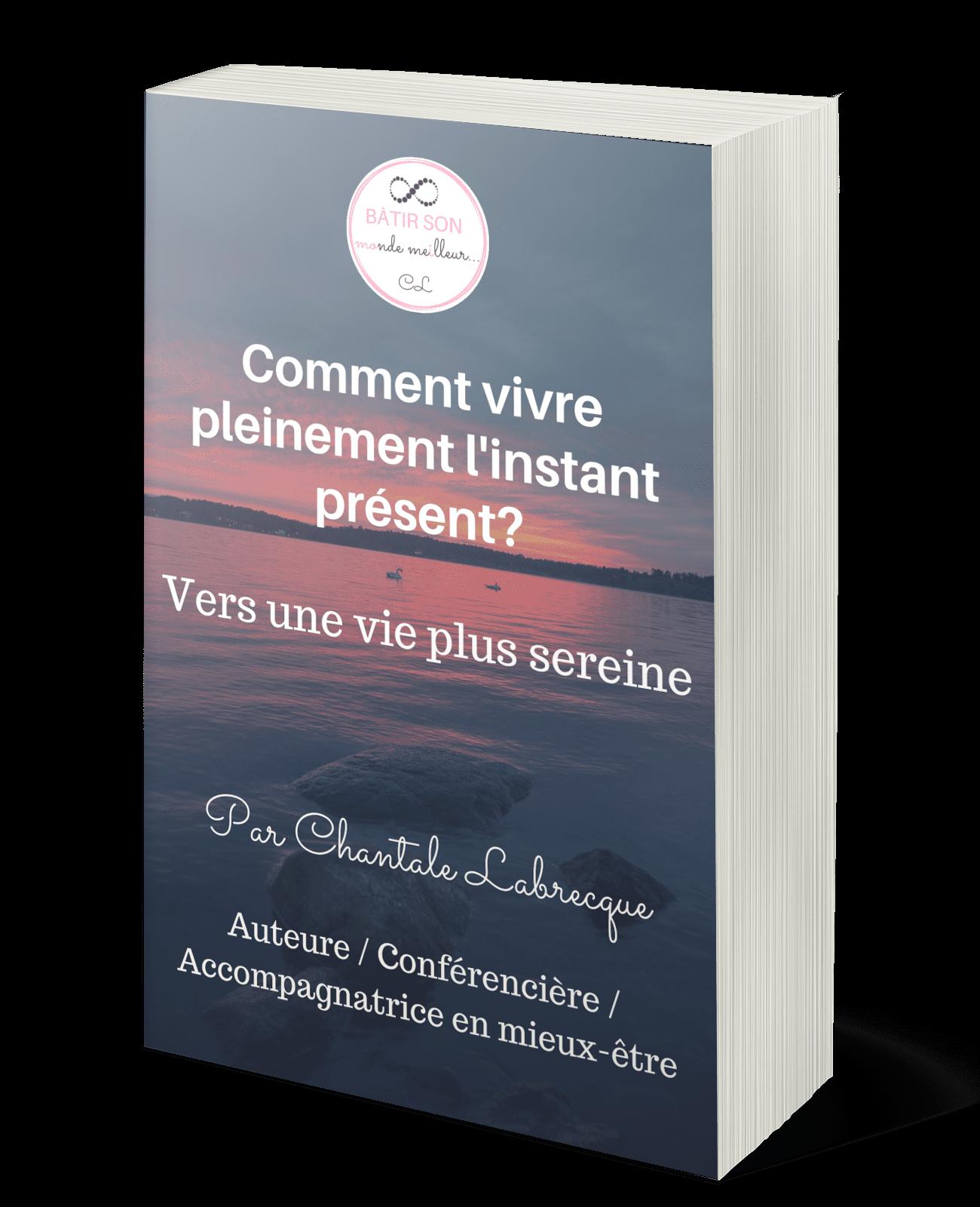 Guide Comment vivre linstant present Chantale Labrecque